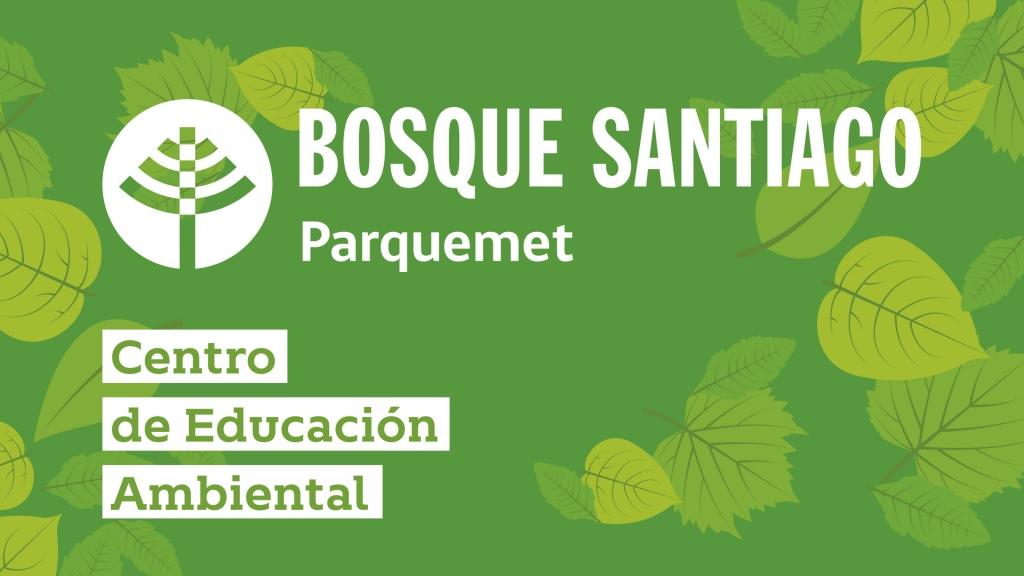 Bosque Santiago